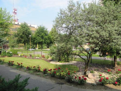 Školská záhrada